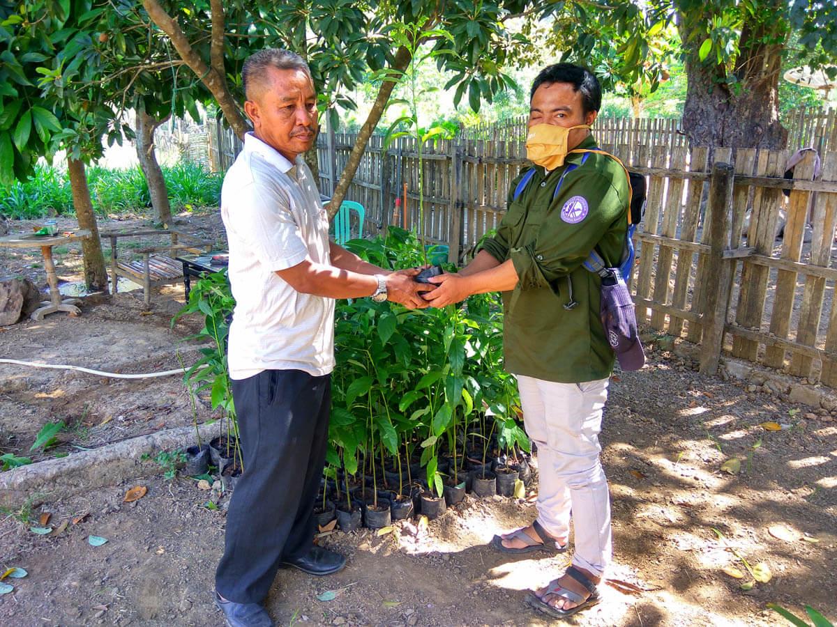 Penyerahan Bantuan 150 bibit buah nangka dan alpokat untuk kegiatan penghijauan di Pondok Pesantren Nahdlatul Wathan